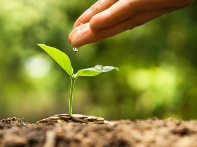 Você economiza água? Confira 5 dicas sustentáveis para o dia a dia.