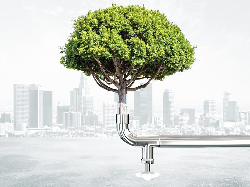 Inovação e Sustentabilidade na Construção Civil